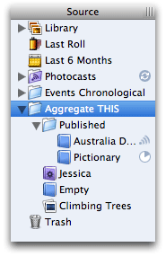 iPhoto's sidebar lists your library, a few special albums (like your last film roll), the trash, and then as many folders as deeply nested as you'd like to organize all your photos. Except for photocasts… they're somehow special.